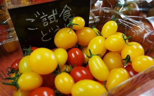 青森県産プチトマト