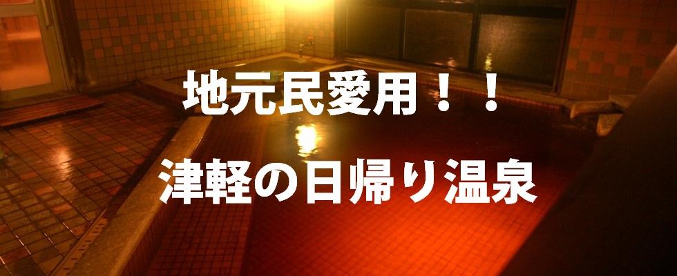 温泉藤山邸