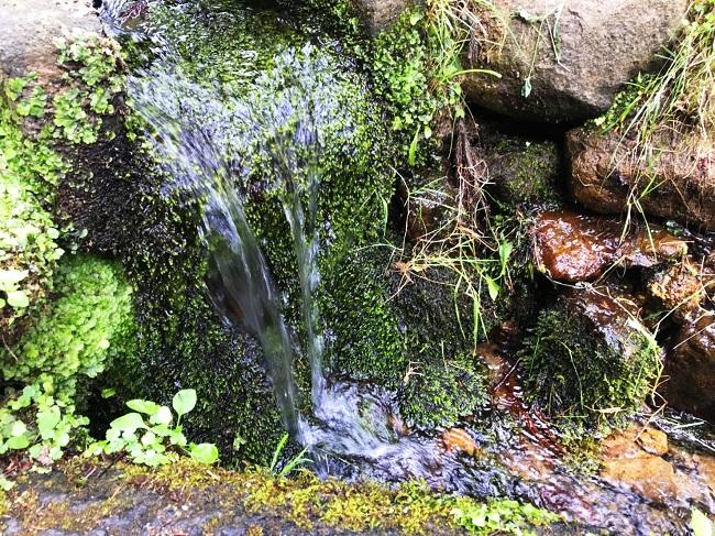 岩木山神社 岩木山水